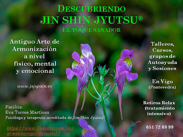 Eva Torres Descubriendo JIN SHIN JYUTSU talleres-cursos-grupos-sesiones-retiros