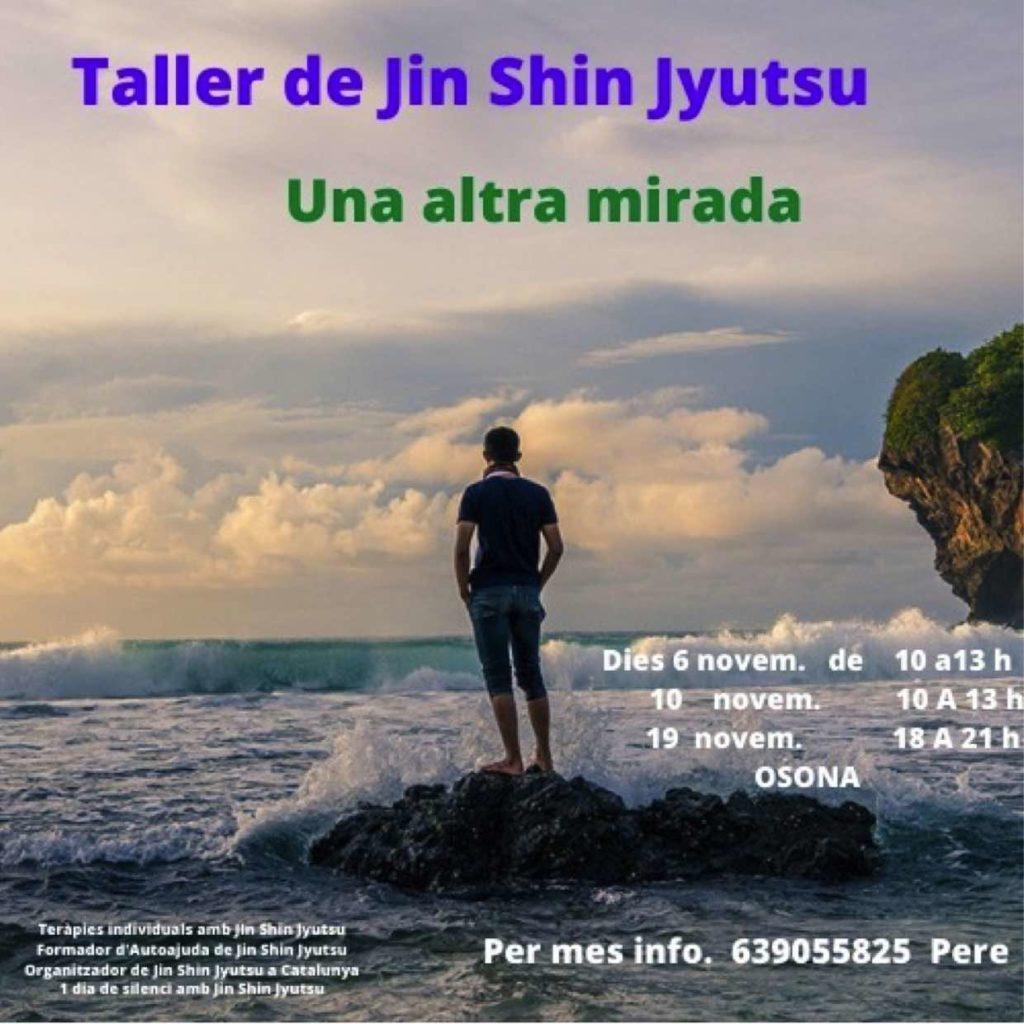 Taller de Jin Shin Jyutsu, Una altra mirada